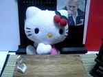 17_kitty