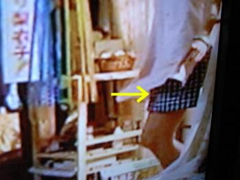 あ、残念。パンツは履いている。