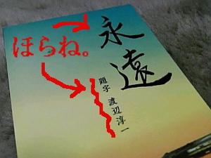 題字・渡辺淳一