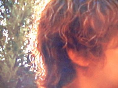 ヘタレた髪