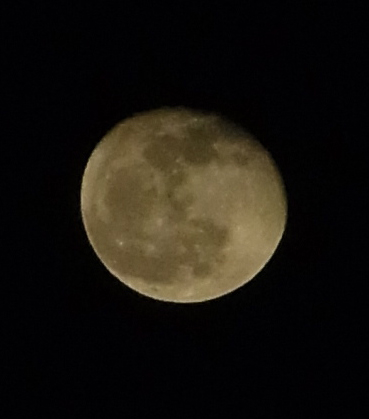 まんまるい月の輝く丘に〜♪