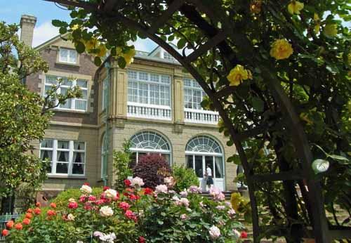 鳩山会館の薔薇